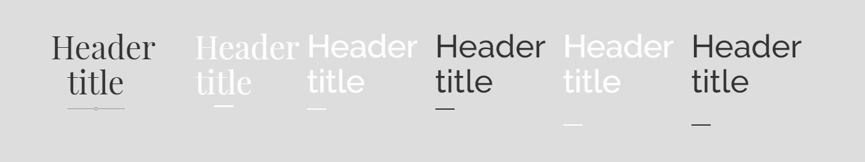 Siver Header